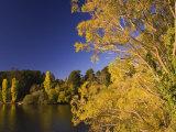 Lake Daylesford, Daylesford, Victoria, Australia, Pacific Photographic Print by Schlenker Jochen
