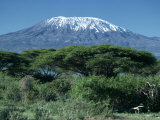 Mount Kilimanjaro, Tanzania, East Africa, Africa Photographic Print by Sassoon Sybil