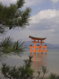Floating Torii, Viewed Through Pine Tree, Itsuku Shima Jinja, Miyajima, Honshu, Japan Photographic Print by Simanor Eitan