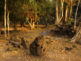Naga Serpent at the Beng Mealea Temple, Siem Reap, Cambodia, Indochina, Southeast Asia Photographic Print by Schlenker Jochen