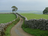 Rural Landscape and Road, Yorkshire, England, United Kingdom, Europe Photographic Print by Woolfitt Adam