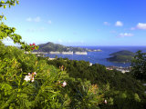 Charlotte Amalie Capital of United States Virgin Islands, West Indies, Caribbean Photographic Print by DeFreitas Michael