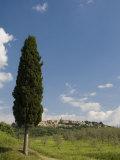 Montepulciano, Val D'Orcia, Siena Province, Tuscany, Italy, Europe Photographic Print by Pitamitz Sergio