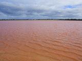 Pink Lake, Dimboola, Victoria, Australia, Pacific Photographic Print by Schlenker Jochen