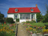 Flower Beds Line a Brick Path Up to a Typical Private House, Stanley, Falkland Islands Photographic Print by Renner Geoff