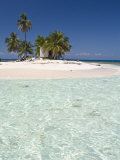 Palm Trees on Beach, Silk Caye, Belize, Central America Photographic Print by Jane Sweeney