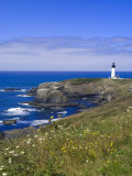 Yaquina Head Lighthouse, Oregon, United States of America, North America Photographic Print by DeFreitas Michael