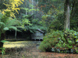 Boathouse, Alfred Nicholas Gardens, Dandenong Ranges, Victoria, Australia, Pacific Photographic Print by Schlenker Jochen