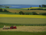 Tractor in Field at Harvest Time, East of Faborg, Funen Island, Denmark, Scandinavia, Europe Photographic Print by Woolfitt Adam