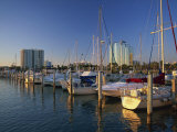 Sarasota Marina in the Evening, Florida, United States of America, North America Photographic Print by Tomlinson Ruth