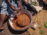 Woman Sorting Chili Peppers in a Metal Bowl, Ghana, West Africa, Africa Photographic Print by Taylor Liba
