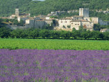Field of Lavender and Village of Montclus Behind, Gard, Languedoc-Roussillon, France, Europe Photographic Print by Tomlinson Ruth
