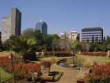 Harare Public Gardens, and City Skyline, Harare, Zimbabwe, Africa Photographic Print by Poole David