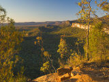 Carnarvon Gorge, Carnarvon National Park, Queensland, Australia, Pacific Photographic Print by Schlenker Jochen