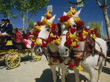 Pair of Horses Decorated with Colourful Headgear, Feria De Abril, Seville, Andalucia, Spain Photographic Print by Tomlinson Ruth