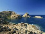 Lighthouse at Ile De La Pietra, Ile-Rousse, Corsica, France, Eurpe Photographic Print by Tomlinson Ruth