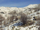 Snow Covered Landscape on Mount Hermon, Israel, Middle East Photographic Print by Simanor Eitan