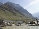 Mud, Pin Valley, Spiti, Himachal Pradesh, India Photographic Print by Simanor Eitan