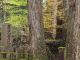 Okunoin Graveyard, Site of 20000 Buddhist Gravestones, Koya-San, Kansai, Honshu, Japan Photographic Print by Schlenker Jochen