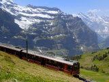 Train for Jungfraujoch, Kleine Scheidegg, Bernese Oberland, Swiss Alps, Switzerland, Europe Photographic Print by Richardson Peter