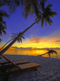 Deckchair on Tropical Beach by Palm Tree at Dusk and Blue Heron, Maldives, Indian Ocean Photographic Print by Papadopoulos Sakis
