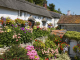 Cottage Garden, Branscombe, Devon, England, United Kingdom, Europe Photographic Print by Edwardes Guy