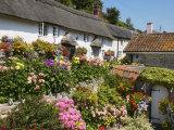 Cottage Garden, Branscombe, Devon, England, United Kingdom, Europe Photographic Print by Edwardes Guy