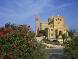 Oleander Bush in Front of the Ta Pinu Cathedral at Gozo, Malta, Europe Photographic Print by Merten Hans Peter