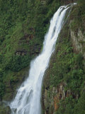 One Thousand Foot Waterfall over the Mountain Pine Ridge, Belize, Central America Photographic Print by Strachan James
