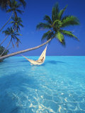 Woman in Hammock, Maldives, Indian Ocean Photographic Print by Papadopoulos Sakis