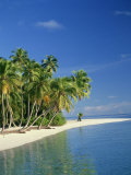 Tropical Beach with Palm Trees at Kudabandos in the Maldive Islands, Indian Ocean Photographic Print by Tovy Adina