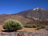 Mount Teide, Parque Nacional De Las Canadas Del Teide Tenerife, Canary Islands Photographic Print by White Gary