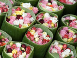 Roses for Sale, Chatuchak Weekend Market, Bangkok, Thailand, Southeast Asia Photographic Print by Porteous Rod