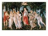 Sandro Botticelli - Primavera - Birinci Sınıf Giclee Baskı