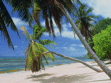 Praslin Beach, Seychelles, Indian Ocean, Africa Photographic Print by Merten Hans Peter
