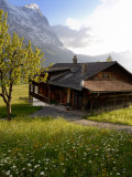Spring Alpine Flower Meadow and Chalet, Grindelwald, Bern, Switzerland, Europe Photographic Print by Richardson Peter