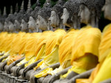 Buddha Statues, Ayuthaya, Thailand, Southeast Asia Photographic Print by Porteous Rod