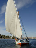 Felucca, River Nile, Aswan, Egypt, North Africa, Africa Photographic Print by Groenendijk Peter