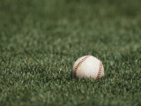 Baseball Photographic Print by Steven Sutton