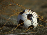 Soccer Ball in Net Photographic Print
