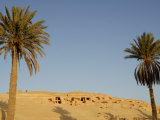 Jabal El Mawta, Oasis of Siwa, Egypt, North Africa, Africa Photographic Print by Groenendijk Peter