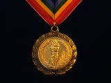 Gold Medal Photographic Print by Paul Sutton