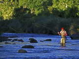Fly Fisherman, USA Photographic Print