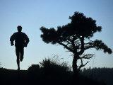 Silhouette of Runner and Tree Reprodukcja zdjęcia