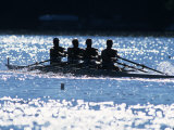 Silhouette of Men's Fours Rowing Team in Action, USA Lámina fotográfica