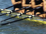 Detail of Rowers in Action Photographic Print