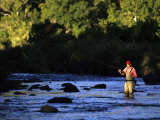 Fly Fisherman Photographic Print