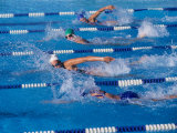 Female Swimmers Competing in a Freestyle Race Photographic Print