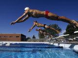 Swimmers Starting a Race Reprodukcja zdjęcia