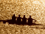 Silhouette of Men's Fours Rowing Team in Action, Atlanta, Georgia, USA Photographic Print
